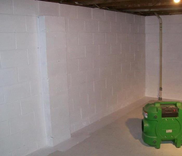 Moldy basement in Rochelle, IL After