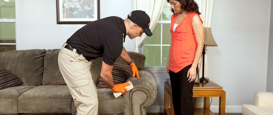 De Kalb, IL carpet upholstery cleaning